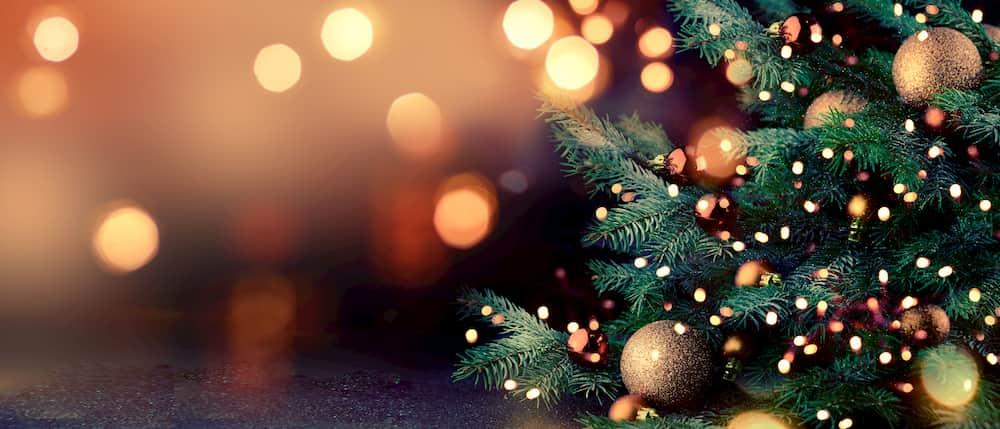 Traditions de Noël en France sapin