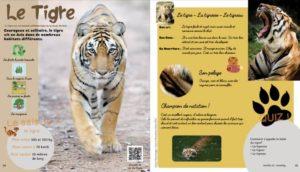 Touk Touk Magazine jeunesse reportage animalier