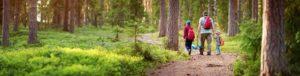 Randonnée en famille en forêt